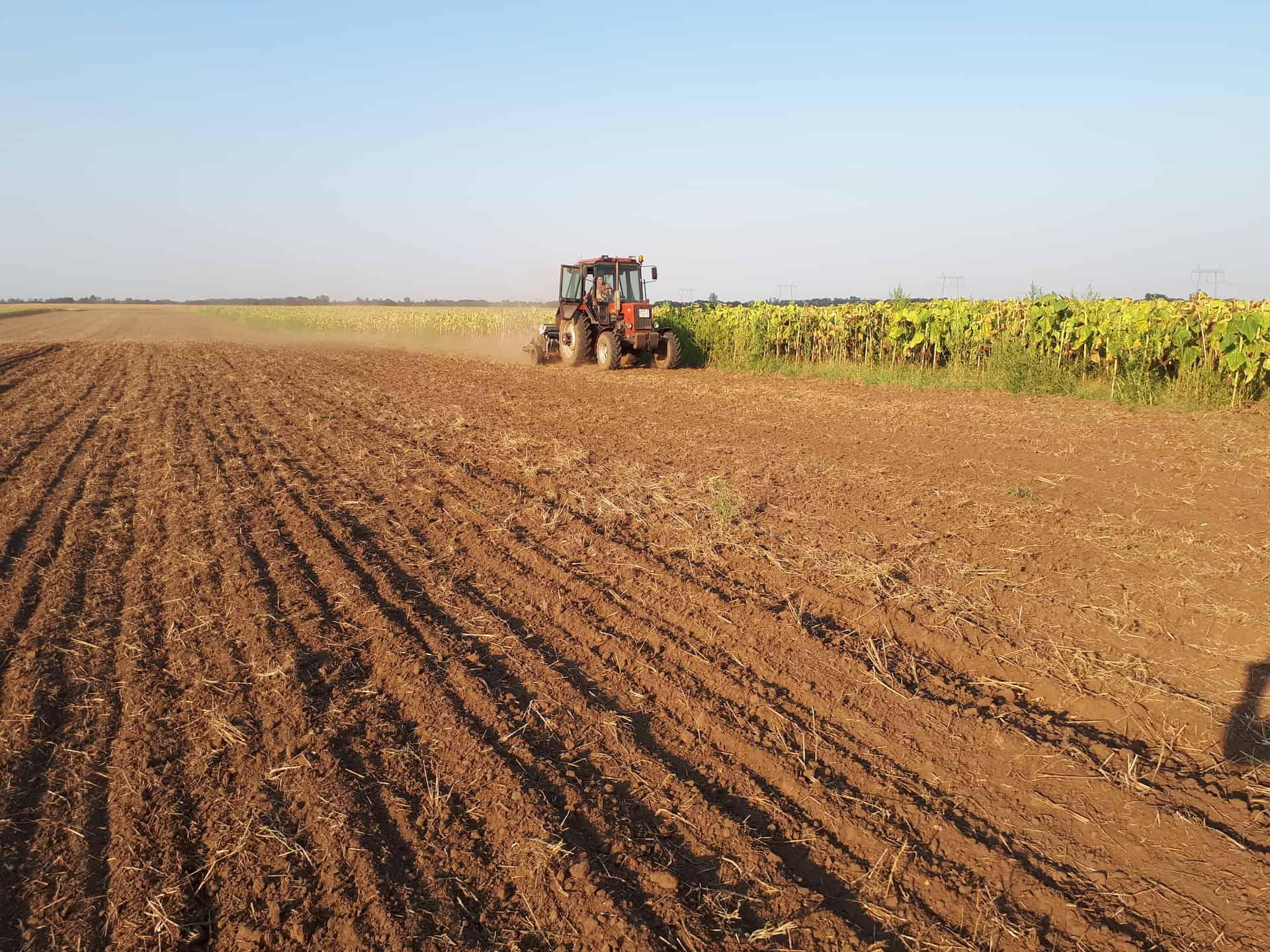 szántás traktorral
